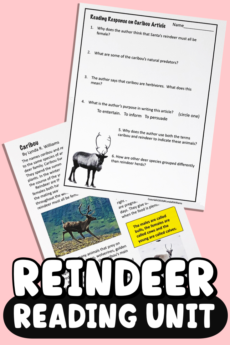 Reading Unit Reindeer