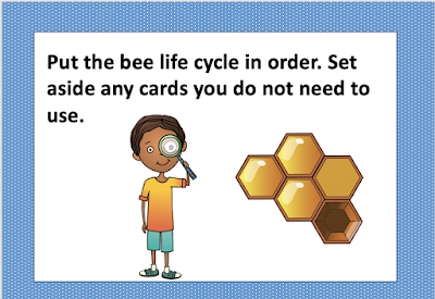 task cards third grade science