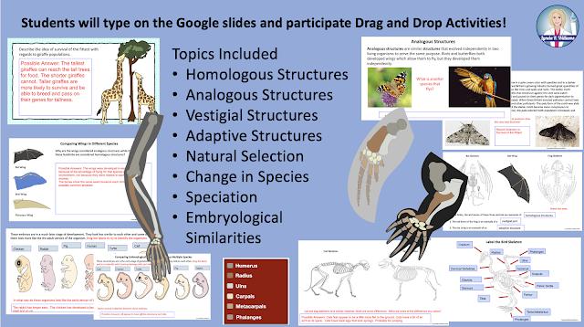Interactive Slides forr google Classroom Online Unit