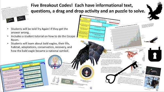 bald eagle digital escape room