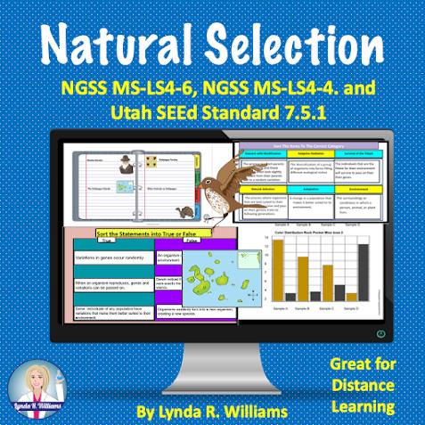 Natural Selection Worksheet Biological Evolution Standards