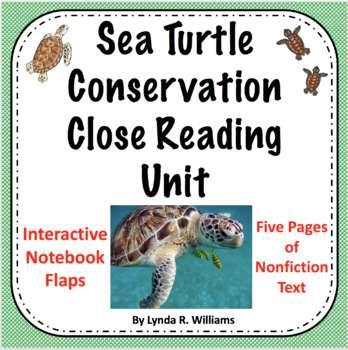 Sea Turtle Reading Passages