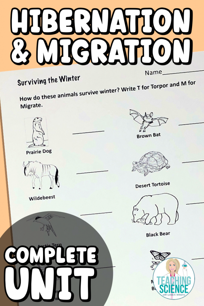 Animal migration and hibernation