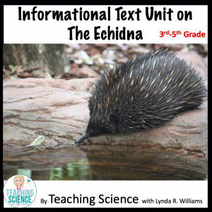 Informational text Echidna