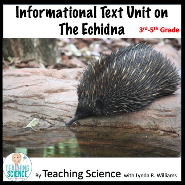 Informational text Echidna