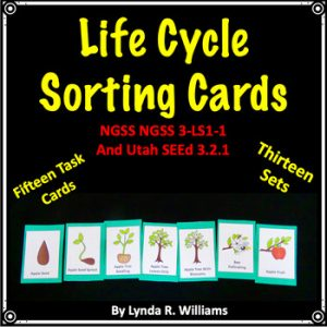 life cycle sorting cards