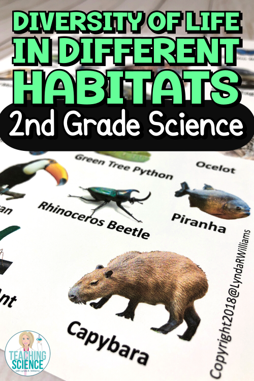 Diversity of Life in Different Habitats – 2nd Grade Science Unit