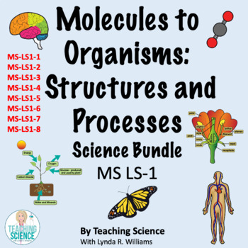 Molecules to Organisms